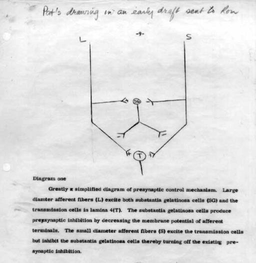 kapı kontrol teorisi
